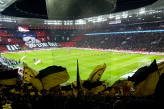 21.-Bayer-Leverkusen-BVB_08.02.2020-01