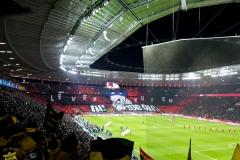 21.-Bayer-Leverkusen-BVB_08.02.2020-02