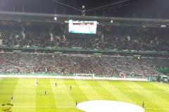 DFBP-1-8F_Werder-Bremen-BVB_04.02.2020-08